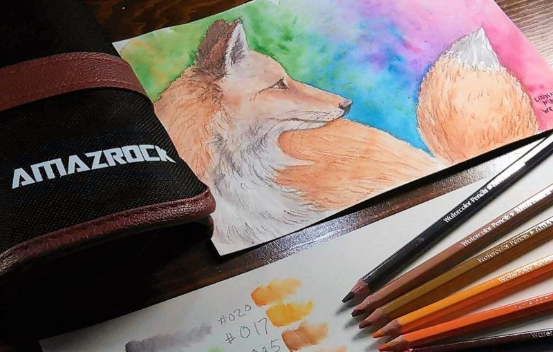 Watercolor Pencils Painting Tutorial | How to paint a fox with Amazrock pencils