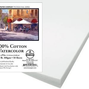 Bee Paper 100% Rag 140# Cold Press Watercolor Paper Pack, 6-Inch by 9-Inch, 50 Sheets per Pack (1153P50-609)