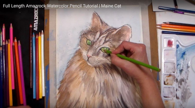 Draw A Cat Easily and Paint - Amazrock Watercolor Tutorial | Colored Pencils - Use them Dry-on-Dry
